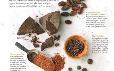 The Wonders of Cacao